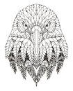 Eagle head zentangle stylized vector illustration freehand pencil hand drawn pattern zen art ornate lace coloring print for Royalty Free Stock Image