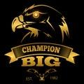 Eagle heraldry vector labels, logos, emblems. Golden eagle sign design