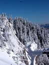 Eagle and mountain peak Royalty Free Stock Photo