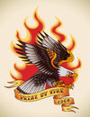 Eagle old school tattoo bald attacking through the fire and flames design editable vector illustration Stock Photo