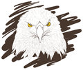 Eagle sketch. Royalty Free Stock Images