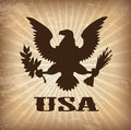 Eagle usa over vintage background vector illustration Royalty Free Stock Photos