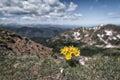 Eagles Nest Wilderness, Colorado Royalty Free Stock Photo