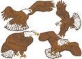Eagles set of hand drawn illustrations Stock Image