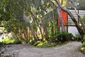 The eames house studio view of driveway eucalyptus trees and of in pacific palisades la Royalty Free Stock Photos