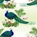 Eamless Texture Peacock Beauty...