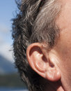 Ear Stock Photography