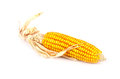 An ear of corn isolated Royalty Free Stock Photo
