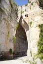 Ear of Dionysius Royalty Free Stock Photos