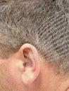 Ear listening 免版税库存图片
