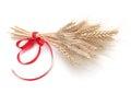 Ear of wheat Royalty Free Stock Photo