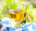 Earl grey tea with bergamot Royalty Free Stock Image