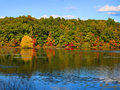 Early autumn time in michigan tree reflections the lake Royalty Free Stock Image
