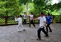 Early morning chinese tai chi exercise in park singapore may a group of singaporeans practice the art of a shaded spot at the Royalty Free Stock Images