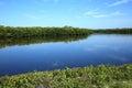 Early morning at Ding Darling on Sanibel Island, Florida, USA. Royalty Free Stock Photo