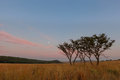 Early morning full moon at ezemvelo south africa Stock Photos