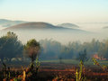 Early morning mist in Myanmar highlands Royalty Free Stock Photo