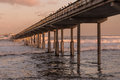 Early morning at Ocean Beach Fishing Pier Royalty Free Stock Photo