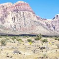 First Creek Trail, Red Rock National Conservation Area, Nevada Royalty Free Stock Photo