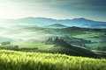Early spring morning in Tuscany, Italy Royalty Free Stock Photo