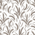 Ears of wheat seamless pattern