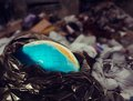 Earth contamination concept globe in trash Royalty Free Stock Image