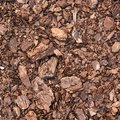 Earth covered with mulch Stock Images