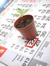 Earth day marked on the calendar with a young plant as a symbol Stock Photo