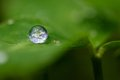 The earth in a drop - Green Living Royalty Free Stock Photo