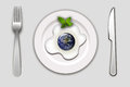 Earth in an egg Royalty Free Stock Photo