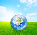Earth globe on green grass Stock Photography