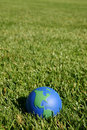 Earth globe showing USA in green grass Stock Image
