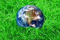 Earth at the green grass Stock Images