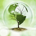 Earth tree abstract eco backgrounds Royalty Free Stock Image