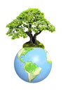 Earth and tree isolated on white background Stock Photos