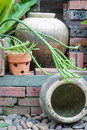 Earthen jar apart of garden decorated with Stock Photo