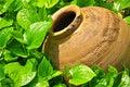Earthen jar on the green grass Stock Photo