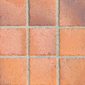 earthenware floor tile Royalty Free Stock Photo
