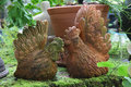 Earthenware in garden Royalty Free Stock Photo
