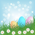 Easter background colorful eggs in a meadow with flowers for Royalty Free Stock Photos