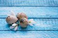 Easter  background with eggs and snowdrops Royalty Free Stock Image