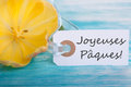 Easter background with label with the french words joyeuses paques which means happy Royalty Free Stock Photography