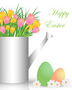 Easter background a metal watering can with colorful tulips inside and eggs on white Stock Images