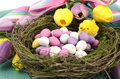 Easter background with painted Easter eggs in birds nest Royalty Free Stock Photo