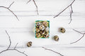 Easter background, quail eggs in a bright box decorated with tree branches. Flat lay, top view, view from above Royalty Free Stock Photo
