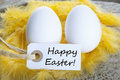 Easter background with two eggs and label with happy on it Royalty Free Stock Images