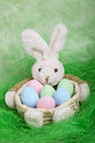 Easter basket with decorated eggs and the easter bunny on green background Stock Photos