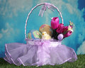 Easter basket outdoors on the grass Stock Photography