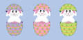 Easter bunnies cute colorful happy in eggs Royalty Free Stock Photos