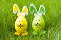 Easter bunnies on grass decorative eggs green background Royalty Free Stock Photo